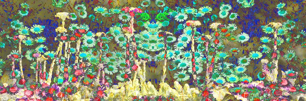 Whimsical Daisies