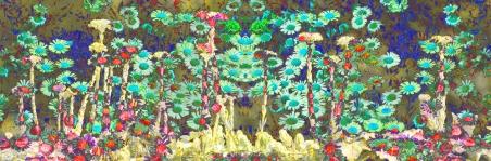 Blog-Banner-Daisies-2